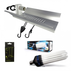 Kit lampe CFL 200W Croissance - FLORASTAR