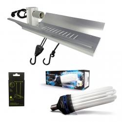 Kit lampe CFL 250W Croissance - FLORASTAR