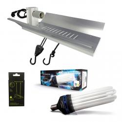 Kit lampe CFL 300W Croissance - FLORASTAR