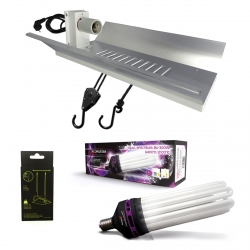 Kit lampe CFL 300W Dual spectrum - FLORASTAR