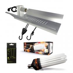 Kit lampe CFL 300W Floraison - FLORASTAR