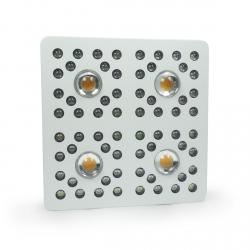 FLORASTAR XTREM LED 4 - Full Spectrum Cree