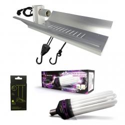Kit lampe CFL 200W Dual spectrum - FLORASTAR