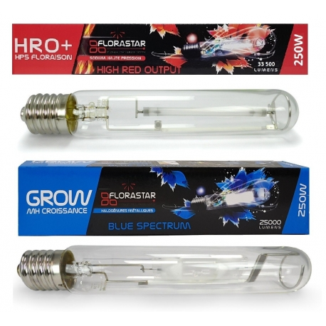 Pack ampoules 250W MH + HPS FLORASTAR