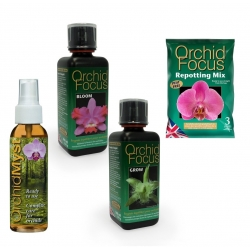 Pack Orchid Focus + Repotting Mix 3 litres