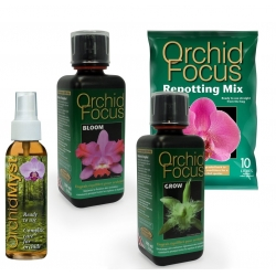 Pack Orchid Focus + Repotting Mix 10 litres