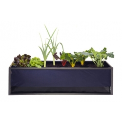 SYSTEME GROWBED SMALL 125x35x35 cm