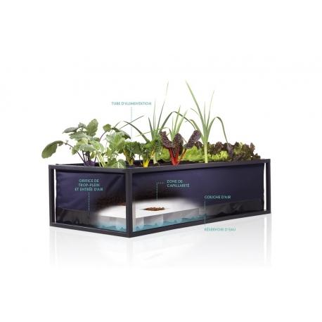 SYSTEME GROWBED MEDIUM 125x65x35 cm