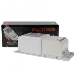 Ballast 600W magnétique Class 1 - FLORASTAR