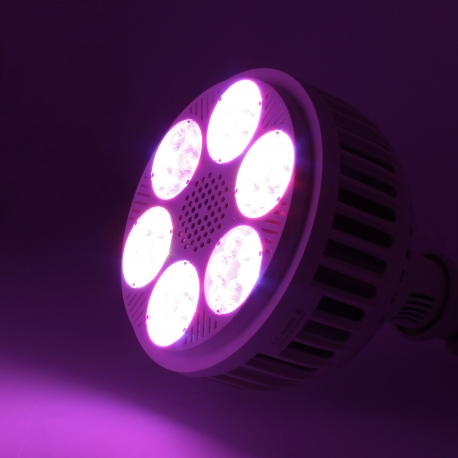 Spot 36 Led x 3W - spectre complet avec infrarouge