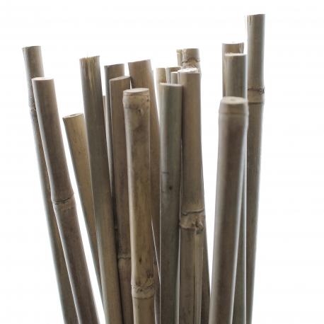 TUTEUR BAMBOU 90 cm - Pack de 25 pcs
