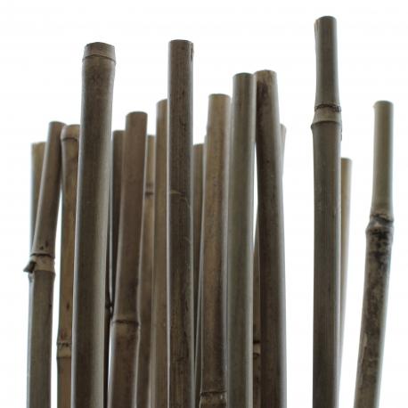TUTEUR BAMBOU 120 cm - Pack de 25 pcs