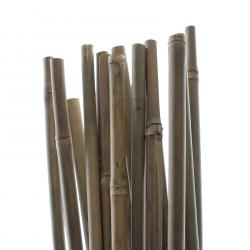 TUTEUR BAMBOU 150 cm - Pack de 25 pcs