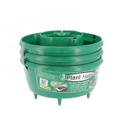 Plant HALOS x 3 - GARLAND