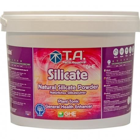 Silicate en poudre - additif organique