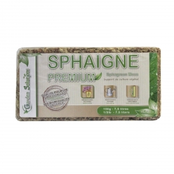 Sphaigne du Chili 100% biodégradable