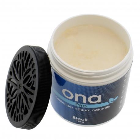 Destructeur d'odeurs ONA block parfum Pro