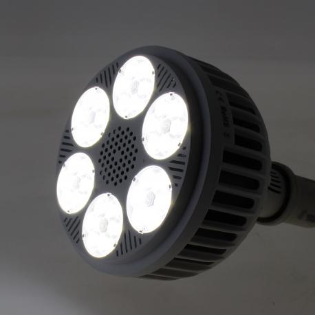 Spot LED 108W spectre croissance 6500K