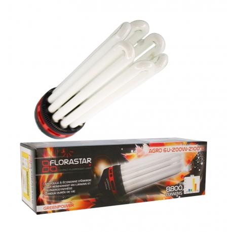 Ampoule Fluo compacte 200W Floraison