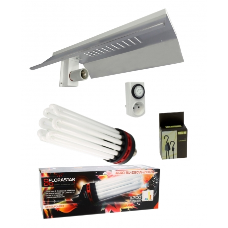 Kit lampe CFL 250W Floraison - FLORASTAR