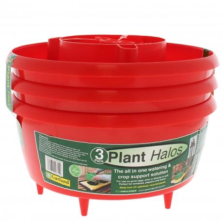 Plant HALOS x 3 - coloris rouge - GARLAND