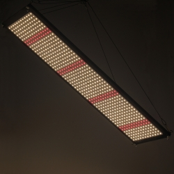 Panneau LED QUANTUM Board - 240W - AGROLIGHT Led