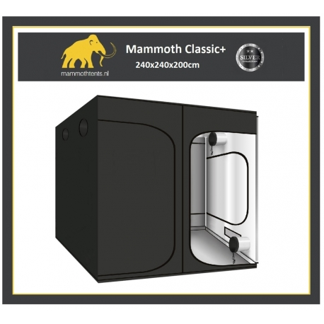 Tente MAMMOTH CLASSIC + 240x240x200cm