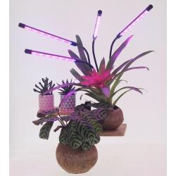 Lampe LED flexible pour plante avec minuterie