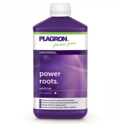 PLAGRON POWER ROOTS - 1 L