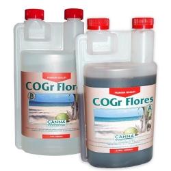 CANNA COGR FLORES A+B - 2x1L