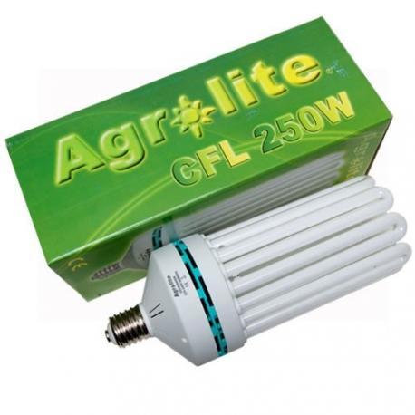 agrolite-cfl-250w-floraison-2700k