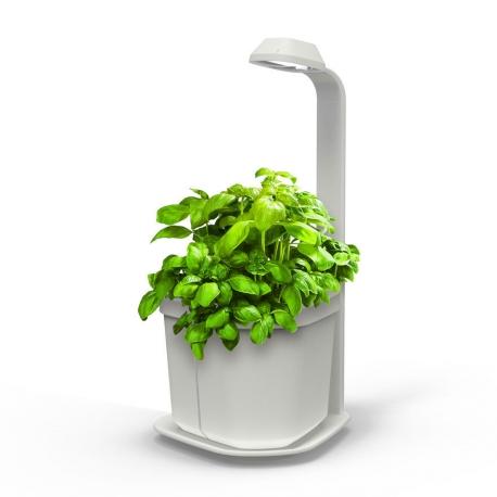 GENIE Kitchen Garden and Lamp - Blanc
