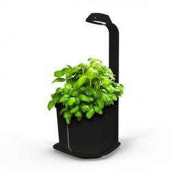 GENIE Kitchen Garden and Lamp - Noir