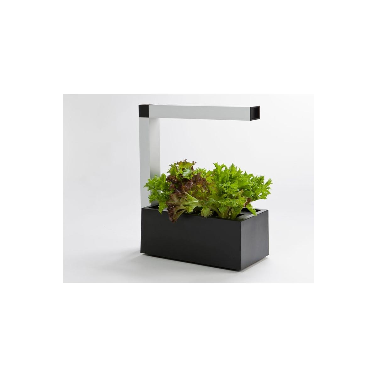 Herbie indoor garden le mini jardin d 39 int rieur noir par - Jardin hydroponique d interieur ...