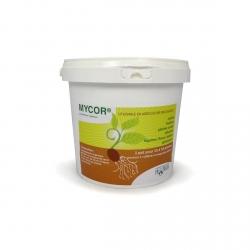 Mycor pot 700gr - If-Tech