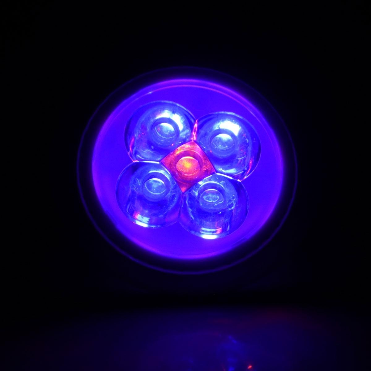 Eclairage led spot led croissance 15w 3 x 5w pistar - Eclairage spot led ...