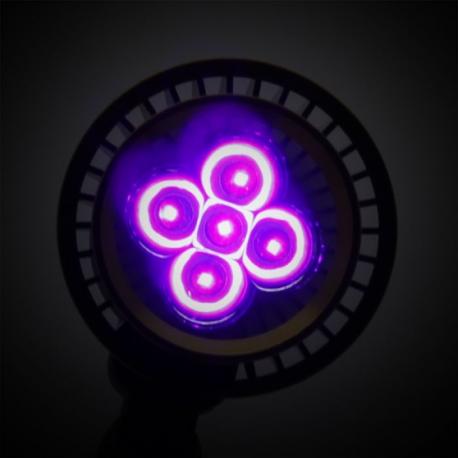 BIONIC SPOT - 15 W UV