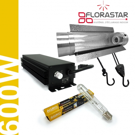 Kit lampe 600W Electro Florastar Cooltube - Agro