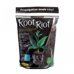 Lot de 50 cubes de germination Root Riot