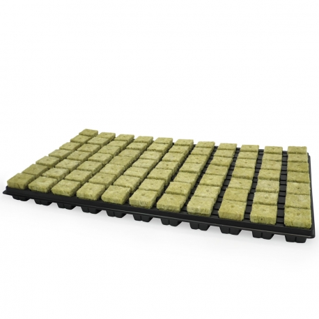 Plateau de 77 bouchons de laine de roche GRODAN