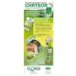 chrysor-pochette-16-bandelettes