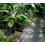 nutriculture-flo-grow-520
