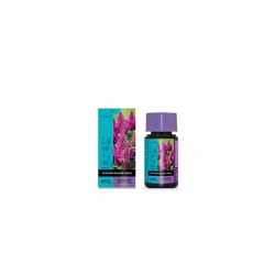 ATAMI BLOSSOM BUILDER LIQUID 50ml