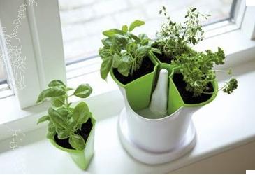 pot herbes aromatiques - Planter Des Herbes Aromatiques En Jardiniere