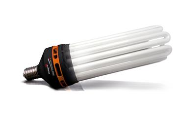 Catégorie Ampoules CFL
