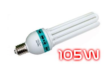 Catégorie ampoule CFL 105W