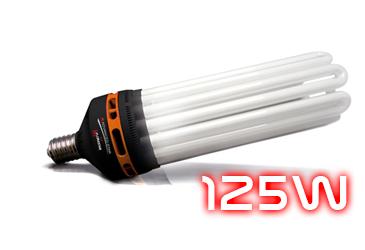 Catégorie ampoule CFL 125W