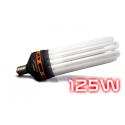 ampoule CFL 125W