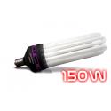 ampoule CFL 150W
