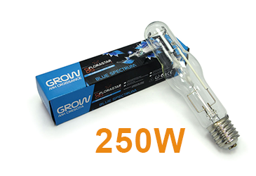 Catégorie Ampoule MH 250 W